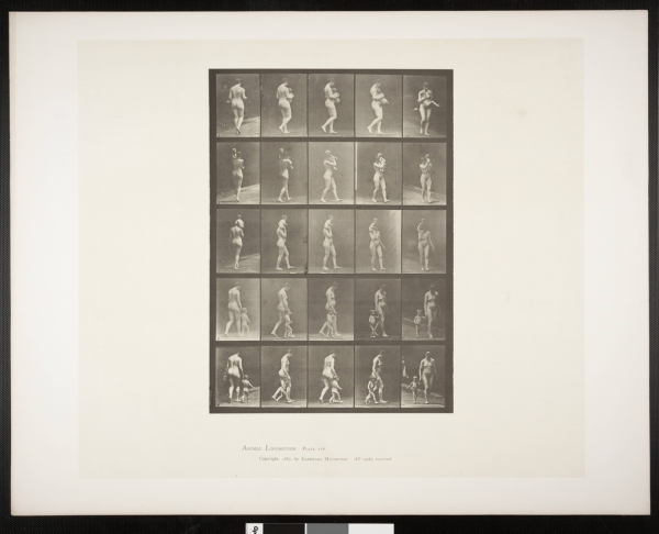 Nude_woman_muybridge2