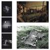 INTEMPERIE 2012- . Imágenes de intervención urbana en sitio eriazo y proceso. Detalle de fotografía postales en b/n
