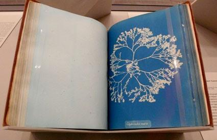 atkins-book